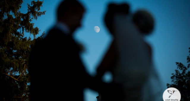 Fotograf nunta Roman - Album online Larisa si Lucian