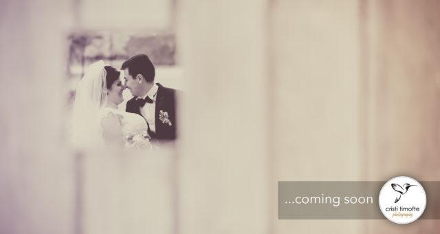 Ana si Laurentiu fotografii de nunta