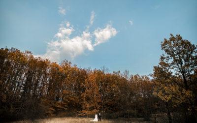 Foto nunta Roxana si Stefan