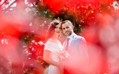 Foto nunta Sergiu si Andra
